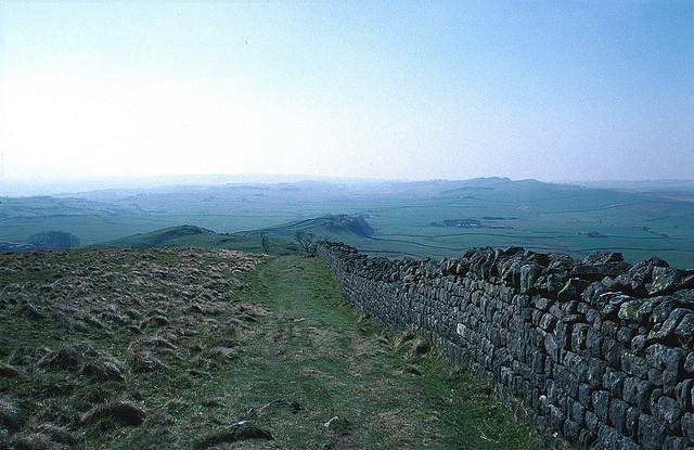 Roman Wall Blues